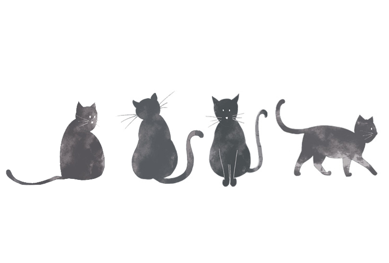design-textile-jardin-ulysse-chat-dessins-bycamille