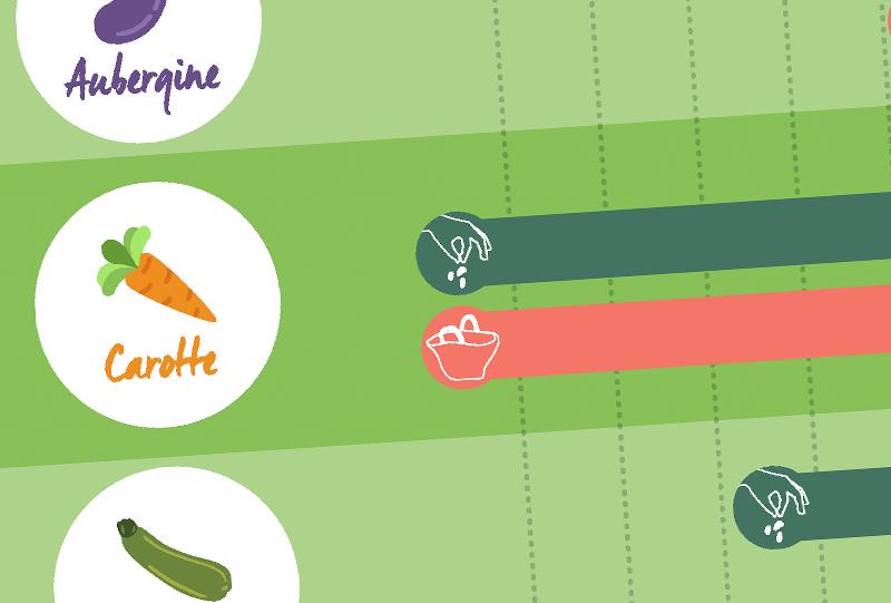 Création infographie et illustration La Pause Jardin, graphiste lyon